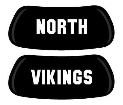 NORTH VIKINGS