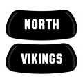 NORTH VIKINGS